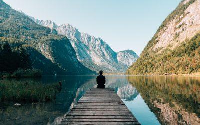 Maximize Your Potential Through Stewardship